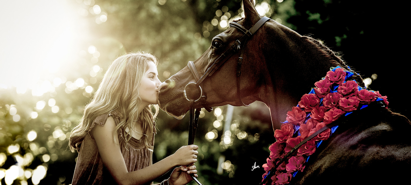 MAHA Girl & Horse